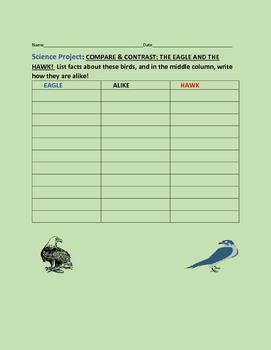 COMPARE & CONTRAST: THE EAGLE & THE HAWK