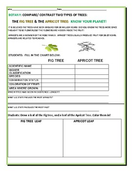 COMPARE/CONTRAST: THE FIG TREE & THE APRICOT TREE:  A BOTANY ACTIVITY