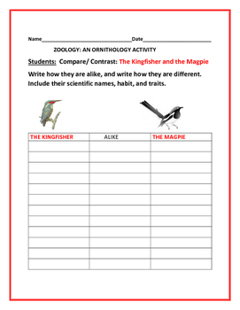 COMPARE/CONTRAST: THE KINGFISHER & THE MAGPIE:  AN ORNITHOLOGY ACTIVITY