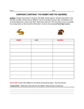 COMPARE/CONTRAST: THE RABBIT & THE SQUIRREL