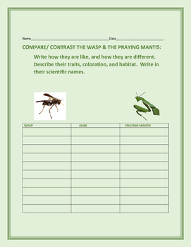 COMPARE/CONTRAST: THE WASP & THE PRAYING MANTIS