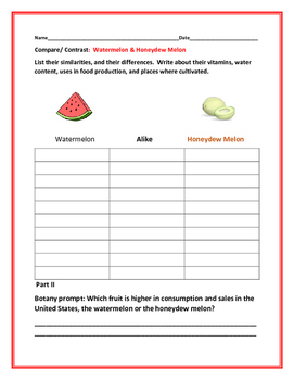 COMPARE/CONTRAST: THE WATERMELON & THE HONEYDEW MELON
