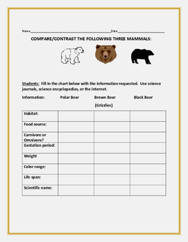 COMPARE/CONTRAST: THREE TYPES OF BEARS