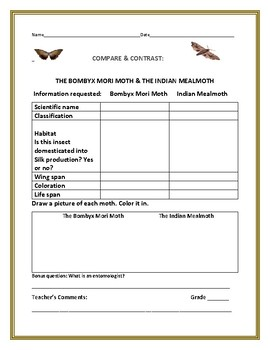 COMPARE & CONTRAST: TWO MOTHS: BOMBYX MORI & THE INDIAN MEALMOTH