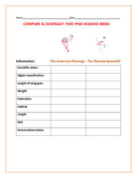 COMPARE & CONTRAST: TWO WADING BIRDS: A SCIENCE/ZOOLOGY ACTIVITY