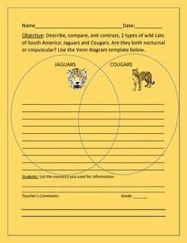 COMPARE JAGUARS & COUGARS: VENN DIAGRAM ACTIVITY