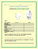 COMPARE THE ALPACA & THE LLAMA: A ZOOLOGY ACTIVITY