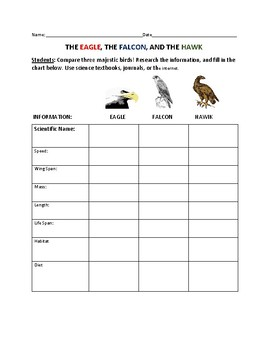 COMPARE THE EAGLE, THE FALCON & THE HAWK: A science, and art activity