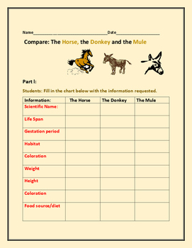 COMPARE THREE MAMMALS: HORSE, DONKEY, & THE MULE