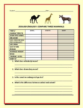 COMPARE THREE MAMMALS: UNGULATES: A STEM ACTIVITY/ GRS. 8-12, MG, AP BIO
