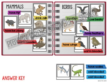 COMPARING BUNDLE: REAL PHOTO Interactive Notebook Activities