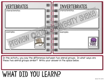COMPARING Vertebrates and Invertebrates: Interactive Notebook Activity
