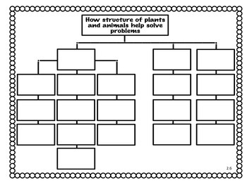 CONCEPT MAPS- UNITS 1- 6- 3rd GRADE READING STREET (2013)