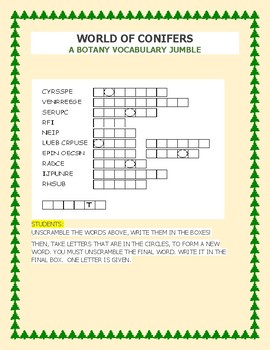 CONIFERS: A WORD JUMBLE ACTIVITY