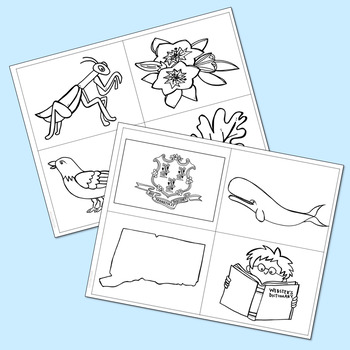 CONNECTICUT History Lapbook Project | State Symbols | Interactive Notebook