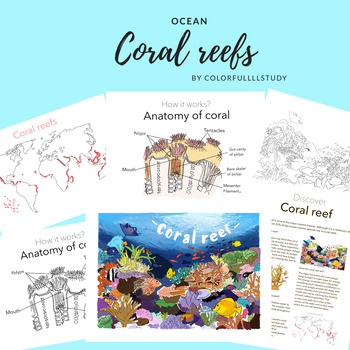 CORAL REEF - by colorfullllstudy