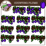 COUNTING PLUMS