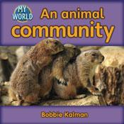 An animal community