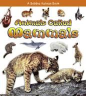 Animals Called Mammals