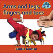 Arms and legs, fingers and toes