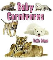 Baby Carnivores (eBook)