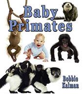 Baby Primates (eBook)