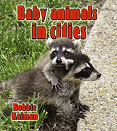 Baby animals in cities (eBook)