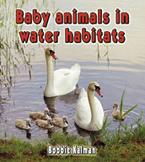 Baby animals in water habitats