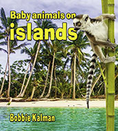 Baby animals on islands (eBook)