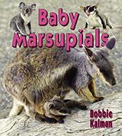 Baby marsupials (eBook)