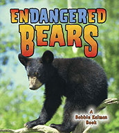 Endangered Bears (eBook)