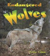 Endangered Wolves
