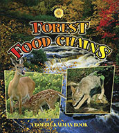 Forest Food Chains (eBook)