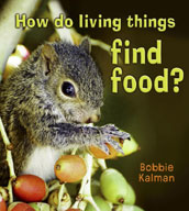 How do living things find food?
