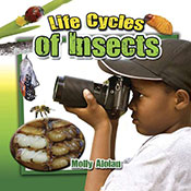 Life Cycles of Insects (eBook)
