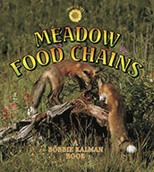 Meadow Food Chains (eBook)