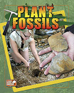 Plant Fossils (eBook)
