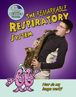 The Remarkable Respiratory System: How do my lungs work?