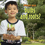 What are bulbs and roots? (eBook)