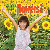 What are flowers? (eBook)