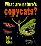 What are nature's copycats? (eBook)