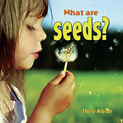 What are seeds? (eBook)