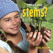 What are stems? (eBook)