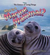 What is a Marine Mammal?