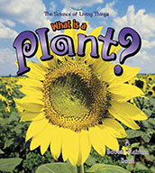 What is a Plant? (eBook)