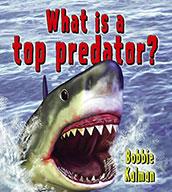 What is a top predator? (eBook)