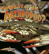 What is an Arthropod? (eBook)