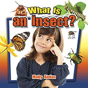 What is an insect? (eBook)