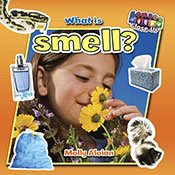 What is smell? (eBook)