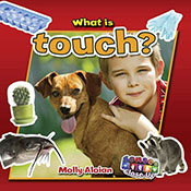 What is touch? (eBook)